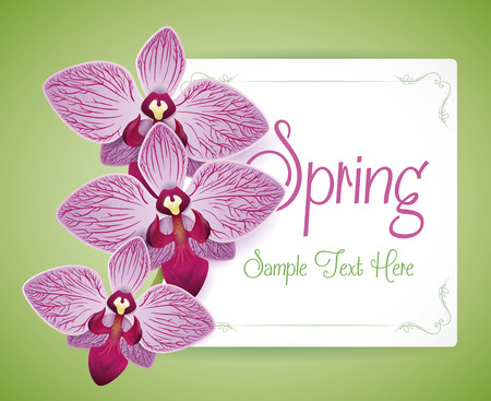 Gorgeous purple orchids on a paper card for Springtime.