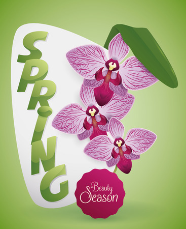 Card with exotic purple orchids and leaf with shiny green text  for Springtime.
