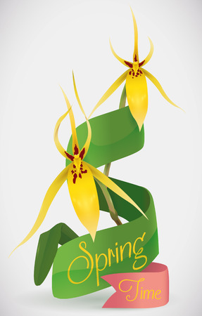 Gorgeous yellow orchids with a ribbon across its stems announcing Springtime in white background. Illustration