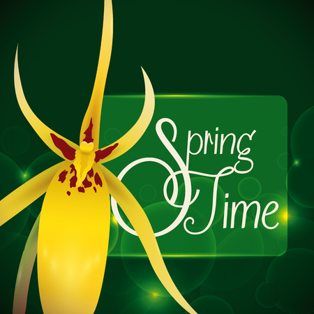 sepal: Beauty delicate yellow orchid on a green dark background with glows and a translucent label with text for Spring.