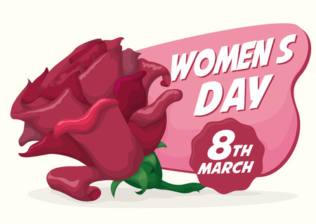 fem: Pretty pink rose with greeting message celebrating International Womens Day in March. Illustration