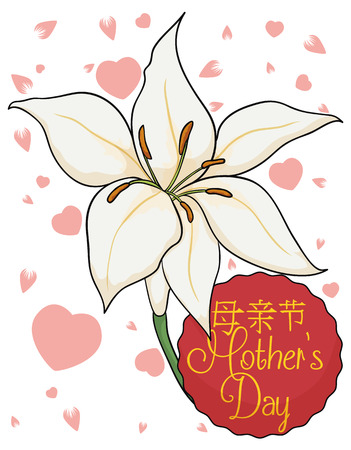 commemoration day: Greeting card with white lilium, pink cherry petals, hearts and red sign to celebrate chinese Mothers Day. Illustration