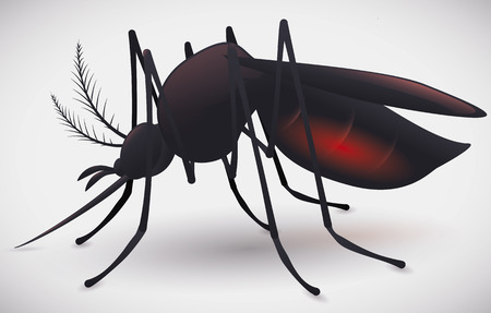 Mosquito silhouette with its abdomen full of red blood isolated.