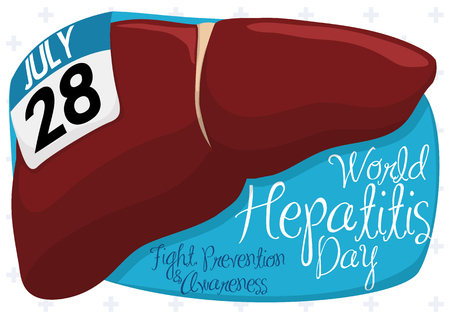 Banner with healthy liver, a loose-leaf calendar and greeting message in a blue sign commemorating World Hepatitis Day.