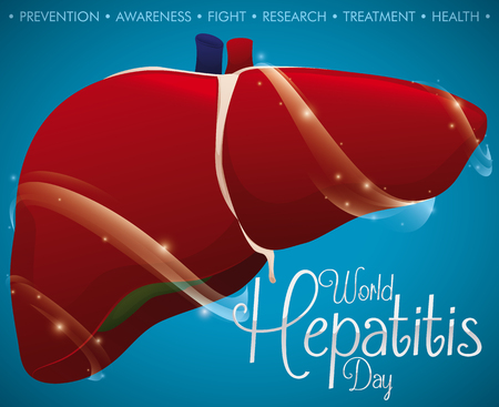 Liver renewed and protected thanks to the prevention and awareness promoted in World Hepatitis Day. Illustration
