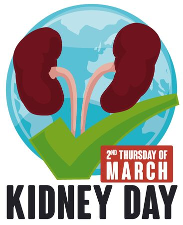 Poster with kidneys over a green check and world map showing the worldwide importance of this celebration in March: World Kidney Day.