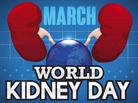 Poster with healthy kidneys united in a globe that symbolize the worldwide awareness campaign in kidney health issues for World Kidney Day in March.