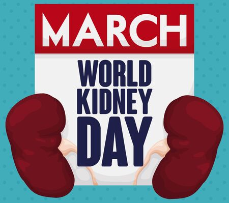 Poster with loose-leaf calendar like a greeting sign with a healthy pair of kidneys over a dotted background to celebrate World Kidney Day in March.