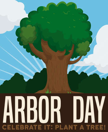 Tall tree in a beautiful view of the forest to celebrate Arbor Day, promoting tree plantation. Ilustrace