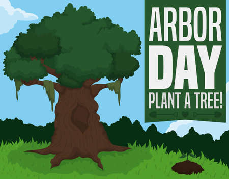 Rooted ancient tree and growing sapling in a beautiful forest view to celebrate Arbor Day promoting planting more trees. Ilustrace
