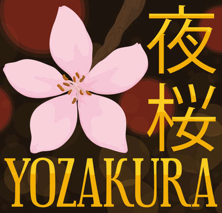 """Night celebration of Hanami (also called """"Yozakura"""", written in Japanese), a traditional custom during this festive event, decorated with a cherry flower in branch and bokeh in the background. Vektoros illusztráció"""