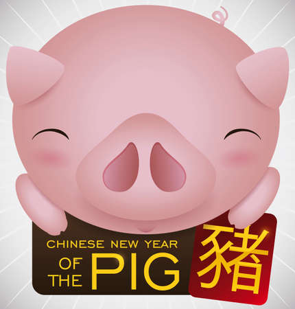 Tender piggy holding greeting signs with a reminder for the upcoming Chinese New Year of the Pig (written in Chinese calligraphy in the red card). Illustration
