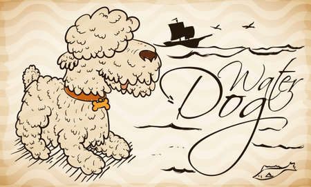 Hairy water dog in hand drawn style and doodles over scroll with waving pattern in the background.