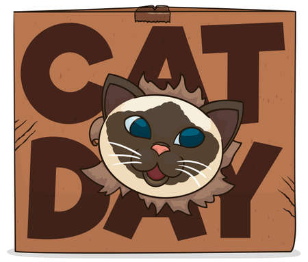 Happy and mischievous Himalayan cat showing its face through a cardboard box, celebrating and promoting the Cat Day.