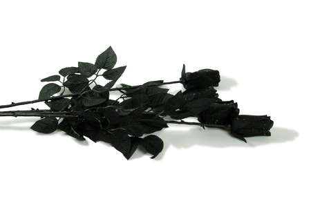 endings: Black roses symbolizing endings and death Stock Photo