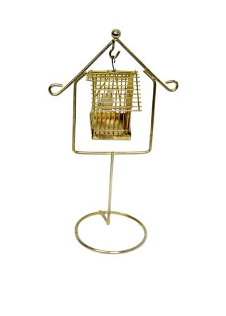 trapped: Bird trapped in the golden cage of home Stock Photo
