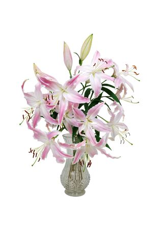 vase: Large pedal pink and white lilies with red pistils full of pollen in a crystal vase