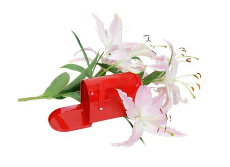Red metal mailbox with signal flag amongst the white and pink lilies Banco de Imagens