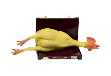Office fun shown by a rubber chicken in a leather briefcase - path included