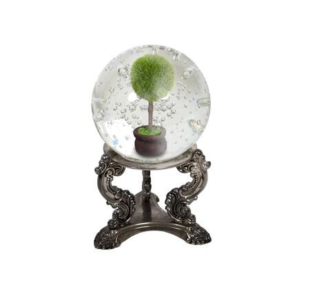 foresee: The future of ecology shown by a crystal ball and tree in a pot inside