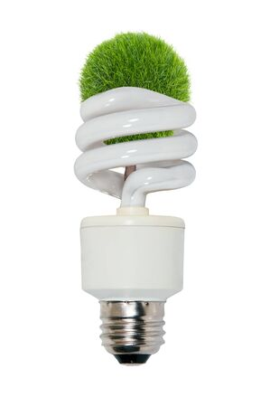 efficiently: Replenish resources shown by spiral glass bulb lightbulb used to light a room efficiently with a tree growing through the interior