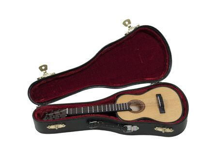 Classical wooden Guitar with molded carrying case Stock Photo - 7764991