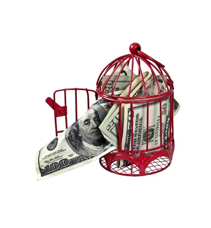 Money flying the coop shown by money coming out of a birdcage