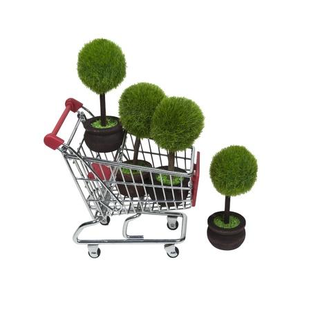 recursos renovables: Compras en busca de recursos renovables, demostrados por varios �rboles de macetas verdes en un carro de compras