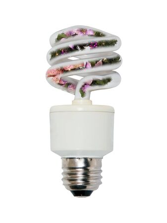 efficiently: Holiday lighting with a winter wreath inside a spiral glass bulb lightbulb used to light a room efficiently