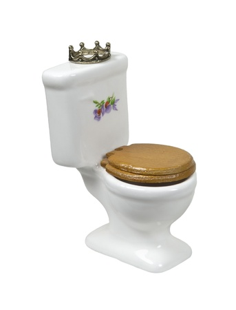 The home throne shown by a porcelain toilet with wooden seat with a crown - path included