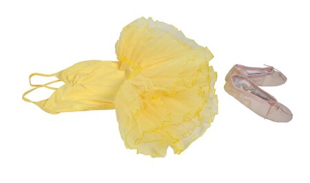 Yellow Ballet tutu dress costume made of tulle with pink ballet slippers for accenting the graceful dancer - path included