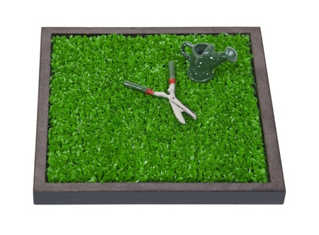 clippers: Waering can and clippers on the grass for lawn maintenance - path included