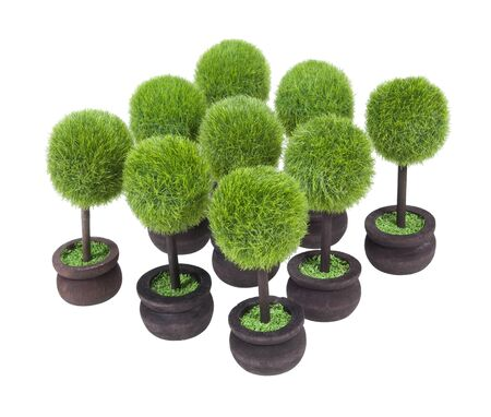 Group of Potted green trees which are easily arranged