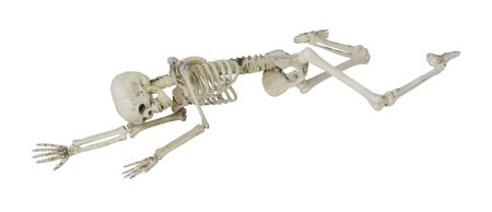 prone: Skeleton laying partially prone and sideways, perhaps in the position the person died - path included Stock Photo