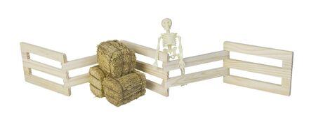 Skelet en balen hooi bij een houten hek - pad inbegrepen Stockfoto