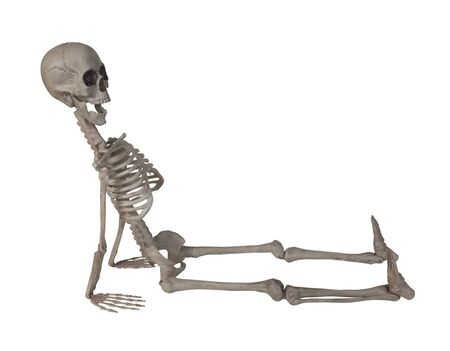 The skeleton leaning back on his hands - path included Stockfoto