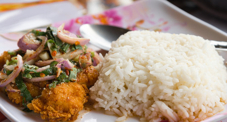 Rice served with Spicy Crispy chicken ,Thai fusion food style closeup with spoon photo
