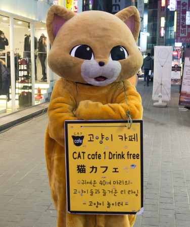 1 person: Seoul, Republic of Korea - January 1, 2015 : Unidentified person in Cat Mascot costume for promote a cat cafe business aroun d walking street in Seoul , South Korea