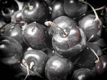 Black cherry macro closeup with dark tone