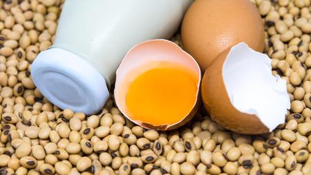 leche de soya: Fuente de proteínas: leche de soja del huevo y la soja Primer macro Foto de archivo