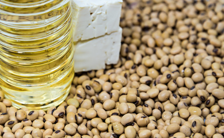 soymilk: Soy product: Soy beans oil near tofu on soy bean background focused on oil bottle