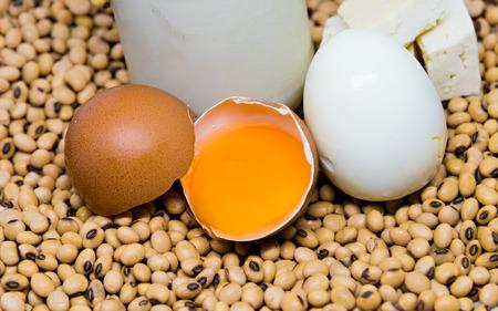 leche de soya: Fuente de prote�nas: huevos y productos de soja - tofu y huevo duro - en los granos de soja fondo