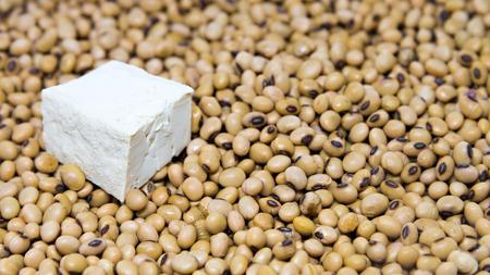 leche de soya: Fuente de prote�nas: queso de soja en el fondo haba de soja