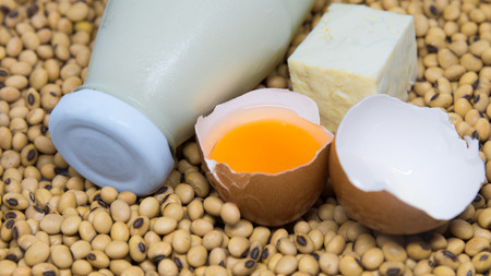 protein source: Source of Protein : Soy milk ,tofu and egg  on soy beans background Stock Photo