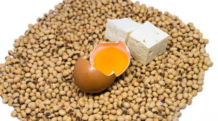 protein source: Source of vegetarian protein : Raw egg and tofu on soybeans isolated on white  background