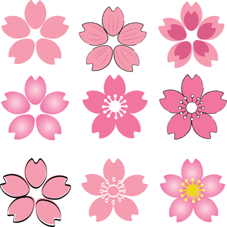 Pink Cherry Blossom  flower set vector with many style include drawing style and shade Ilustração