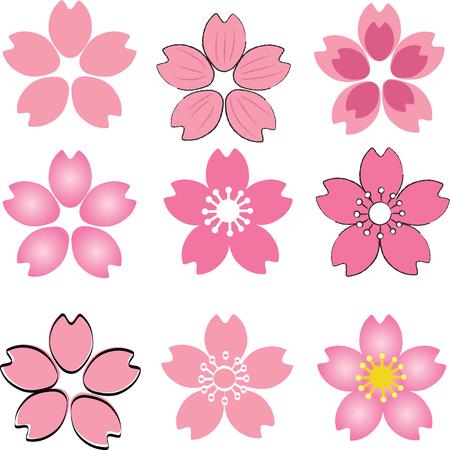 Pink Cherry Blossom kwiat zestaw wektora z wieloma stylami obejmują styl rysowania i cienia