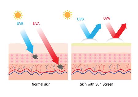 Infografía sobre loción de protección solar a proteger la piel humana contra los rayos UVA, UVB producto de protección solar con protección contra rayos aura