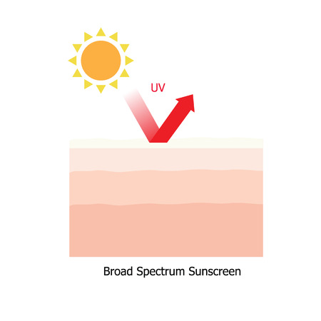 Infographic about sunscreen lotion protect human skin from UV ray Illustration