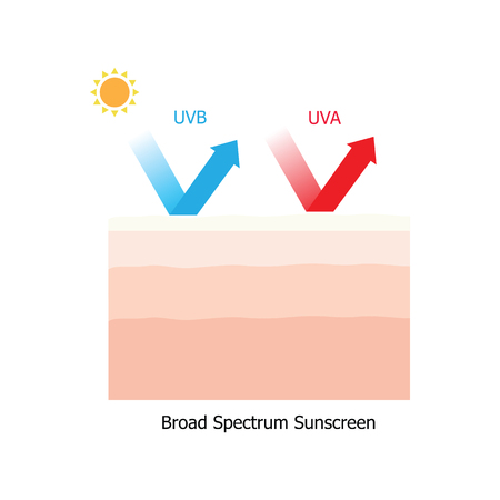 broad: Skin with UVA and UVB protection which has broad spectrum sunscreen product